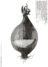 cartel curso ilustracion albarracin 2009